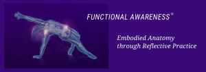 Functional Awareness: Embodied Anatomy through Reflective Practice
